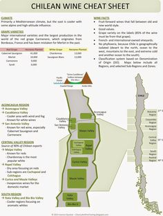 Clear Lake Wine Tasting: Wine Infographic: Chilean Wine Cheat Sheet