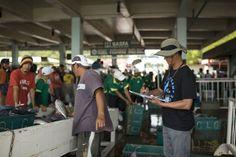 Dolphin Safe Tuna Monitoring Program-EII Asia Pacific
