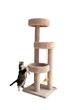 Miller's Cats 1009 Circles of Fun Cat Furniture with 3 Plush Carpeted Platforms > For more information, visit now : Cat condo