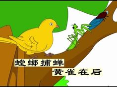 经典成语故事【螳螂捕蝉 黄雀在后】