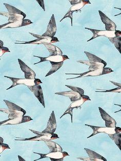Blue Sky Swallow Flight Art Print by Micklyn | Society6