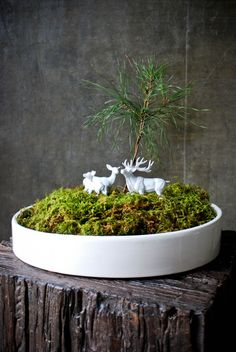 open air terrarium with white figurines
