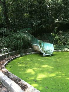 Abandoned swimming pool. Would love to get that up and running. :D
