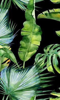 Black Background Painting, Black Background Wallpaper, Green Leaf Wallpaper, Tropical Wallpaper, Plant Painting, Plant Art, Tropical Art, Tropical Leaves, Free Wallpaper Samples