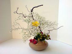 deviantART: More Like Ikebana - Moribana slanting by