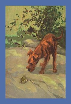 A terrier and a frog. High quality vintage art reproduction by Buyenlarge. One of many rare and wonderful images brought forward in time. I hope they bring you pleasure each and every time you look at