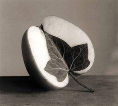De otros mundos: Chema Madoz / La fascinación de los objetos
