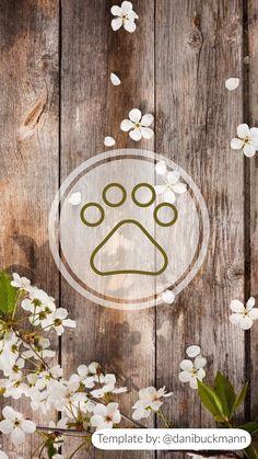Capa destaque para o instagram Insta Icon, Instagram Highlight Icons, Instagram Story, Pet Dogs, Outdoor, Wallpaper Ideas, Highlights, Bb, Cover