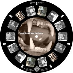 Bear and human interactions on a custom reel made by Oakland Museum of California
