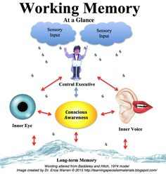Learning Specialist and Teacher Materials - Good Sensory Learning: Mindfulness Training Improves Working Memory Capacity: Classroom Strategies for Success Information Processing Theory, Memory Strategies, Brain Based Learning, Learning Skills, Life Skills, Professor, Auditory Processing Disorder, Sensory Processing, Memory Words