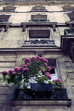 Paris apartment building