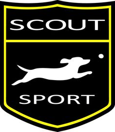 SCOUT has expanded into the girls sports market - Official Logo