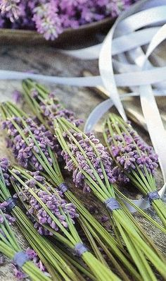 Love these natural lavender sachets!