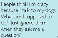 I talk to my dog!