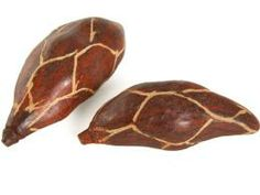 Baobab decor: polished and patterned baobab pods