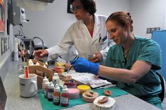 Ret. Master Sgt. Nancy Hansen and Capt. Sarra Cushen paint prosthetic ears for wounded warriors at San Antonio Military Medical Center on July 11, 2012. Hansen is one of two anaplastology's in the DOD and Cushen is beginning her maxillofacial prosthetic fellowship which is a year long program. (U.S. Air Force photo/Desiree N. Palacios)