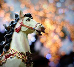 Carousel horse via Flickr