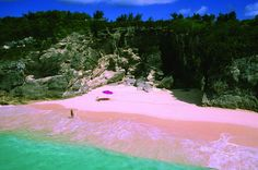 harbour Island in the bahamas is famous for its pink sand beaches, which are found all along the east side of the island. the red shells of marine animals—mix with the island's white sand, thus creating the soft rosy pinkish hue.