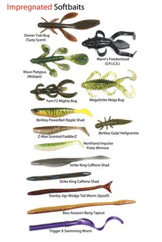 Scent For Bass: Does It Matter? - In-Fisherman