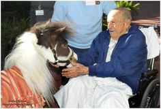 Gentle Carousel Miniature Therapy Horses  Liked · 2 minutes ago     We would love our FB friends to leave encouraging messages for a special gentleman named Manuel (with therapy horse Wakanda at Shands Rehab Hospital). Manuel is 93 years old and the medical staff will share your messages with him and his family. Be sure to add where you are from!