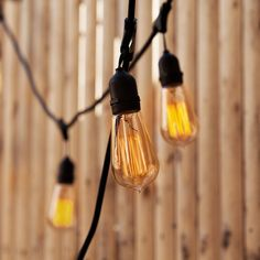 Bushwick Heavy Duty Vintage Stringer with glass Edison light bulbs for indoor or outdoor decor Vintage String Lights, String Lights Outdoor, Vintage Lighting, Outdoor Lighting, Outdoor Decor, Outdoor Retreat, Lighting Ideas, Outdoor Spaces, Outdoor Furniture