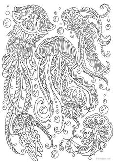 Jellyfish - Printable Adult Coloring Page from Favoreads (Coloring book pages for adults and kids, Coloring sheets, Coloring designs) Ocean Coloring Pages, Detailed Coloring Pages, Spring Coloring Pages, Printable Adult Coloring Pages, Flower Coloring Pages, Mandala Coloring Pages, Animal Coloring Pages, Coloring Pages To Print, Coloring Book Pages