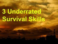 These are the softer survival skills, the ones that you might not think about but are still vitally important. Survival Skills, Poster, Posters, Billboard