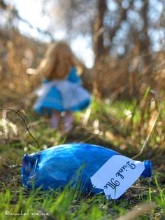Alice In Wonderland  http://www.etsy.com/listing/84276588/ode-to-alice-in-wonderland-8x10-drink-me?ref=sr_gallery_36ga_search_query=alice+in+wonderland+photographyga_view_type=galleryga_page=2ga_search_type=allga_facet=