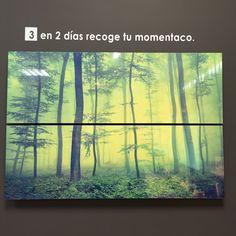 #momenTACO #decoración #hogar #decora #fotografía #fotografías #impresiones #vida #viajes #casas #momentos #historias #amor #love #photos #photography #exposiciones