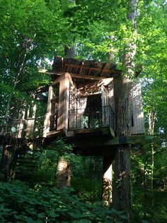 "Treehouse in Atlanta, United States. Recently Named ""AIRBNB'S #1 MOST DESIRABLE LISTING WORLDWIDE!""   Suite of three beautifully furnished rooms set amongst the trees. Just minutes from downtown, this secluded property is an urban retreat like no other.  JANUARY 15, 2016: We were sur... - Get $25 credit with Airbnb if you sign up with this link http://www.airbnb.com/c/groberts22"
