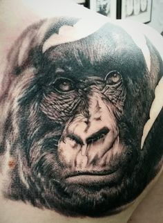 Gorilla Tattoo by Ricky Williams at the Family Business Tattoo (London). Rhino Tattoo, Wildlife Tattoo, Gorilla Tattoo, Female Gorilla, Ricky Williams, Cool Tattoos, Body Art, Family Business, Tattoo Ideas