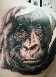 ... Gorilla Tattoo on Pinterest | Rhino Tattoo Wildlife Tattoo and