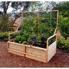6 ft x 3 ft Cedar Raised Garden Bed - Alles über den Garten Vegetable Garden Planning, Vegetable Garden For Beginners, Home Vegetable Garden, Gardening For Beginners, Gardening Tips, Balcony Gardening, Gardening Books, Flower Gardening, Container Gardening