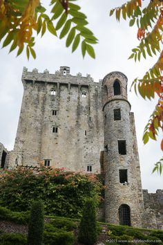 Wish we would have had more time when we were there to explore all the grounds. Blarney Castle