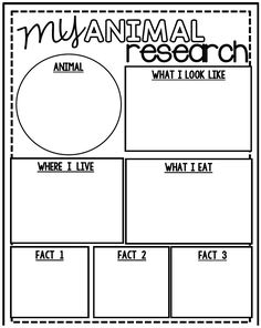 All About Animal Research! Includes: Animal Graphic Organizer and Animal Research Book 1st Grade Science, Kindergarten Science, Teaching Science, Science For Kids, Teaching Kids, Kids Learning, Preschool, Teaching Writing, Writing Activities