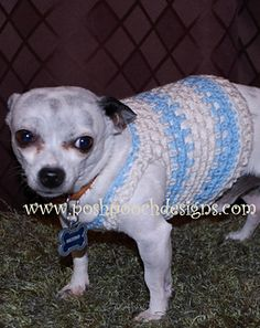 Maximo's Muscle Dog Shirt Crochet Pattern for Small Dogs