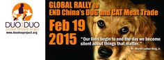 """""""Our lives begin to end the day we become silent about things that matter."""" #Stop #dogmeattrade #catmeattrade #China"""