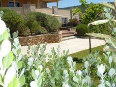 vue jardin arboré de la location à Tizzano (Corsica)