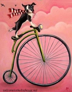 Boston+Terrier+Riding+Bike+by+WelcomeToTheDoghouse+on+Etsy,+$35.00