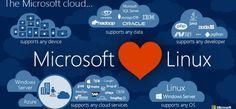 Microsoft, Linux'a SQL veritabanı yazılımını getireceğini açıkladı