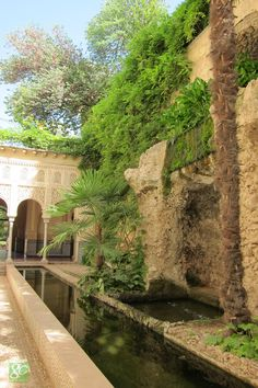 My inner landscape Spanish Garden, Mediterranean Garden, Style Hacienda, Miracles Of Islam, Persian Garden, Granada Spain, Water Features In The Garden, Le Palais, Spanish Colonial