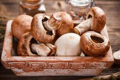 Check out Brown champignons by Grafvision photography on Creative Market