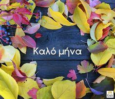 Mina, Greek Quotes, Good Morning, Day, Flowers, Random, Buen Dia, Bonjour, Royal Icing Flowers