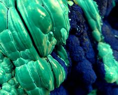 Botryoidal Malachite Contrasting with Azurite
