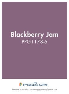 BLACKBERRY JAM from PPG Pittsburgh Paints. Purple can be inspirational and create a pretty environment that nurtures a sense of balance and purpose. The use of this color facilitates meditat Hallway Paint Colors, Purple Paint Colors, Exterior Paint Colors For House, House Colors, Blackberry, Pittsburgh, Proposal, Inspirational, Invites