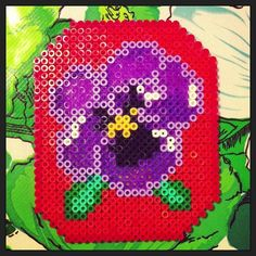 Flower hama beads by blisscocotte