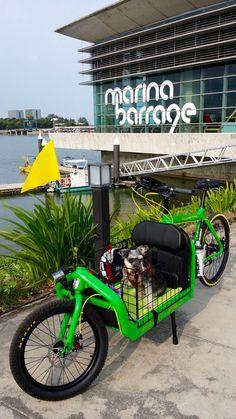 Bullit Lizard King cargo bike Bullitt Cargo Bike, Pet Trailer, Tricycle, Velo Cargo, Biking With Dog, Bmx, Champions Of The World, Motorized Bicycle, Urban Bike