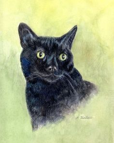 black cat art print matted or unmatted black cat print from watercolor colored pencil