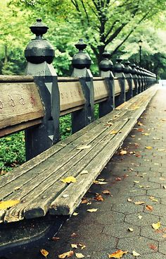 Benches at The Mall in Central Park in NYC- great places to people watch - while on lunch