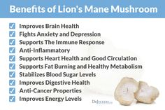 Medicinal Mushrooms have amazing healing properties! Lions Mane mushrooms are a great way to improve your brain health and get your energy system up and running again! Crab Cakes, Mushroom Benefits, Lion Mane, Turmeric Tea, Brain Health, Lions, Health Tips, Health Benefits, Herbalism